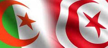 Première au Maghreb : La Tunisie et l'Algérie interconnectent leur réseaux Internet