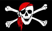 Plusieurs sites gouvernementaux tunisiens piratés