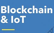 Le Blockchain en débat au Forum Annuel de l'ENSI