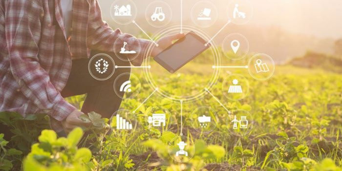 Agritech-and-the-future-of-farming-in-Southeast-Asia